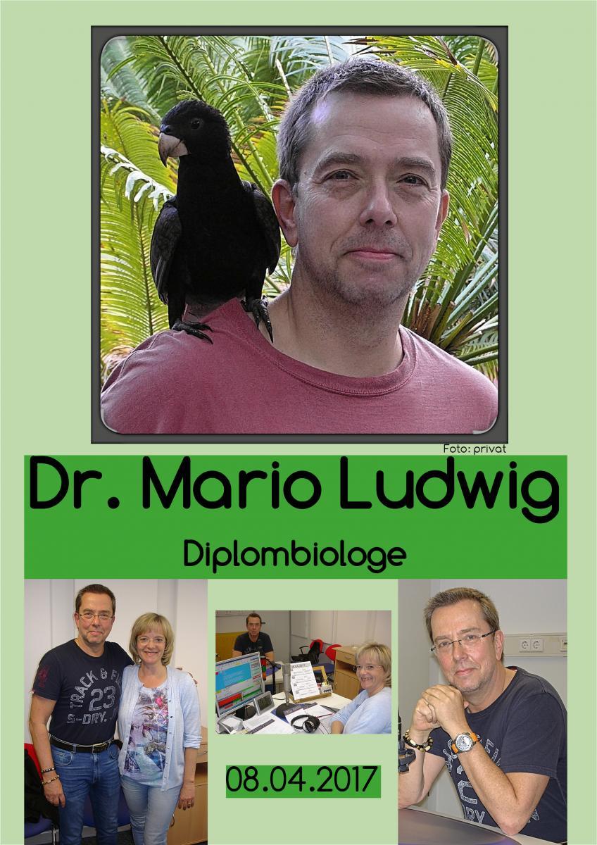 08.04 Dr. Mario Ludwig